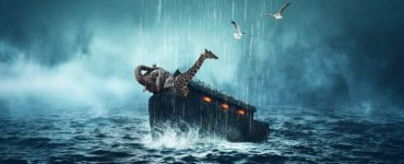 What does Noah and the Ark teach us?